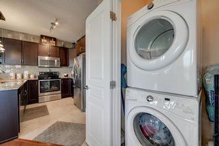 Photo 29: 409 7021 SOUTH TERWILLEGAR Drive in Edmonton: Zone 14 Condo for sale : MLS®# E4259067