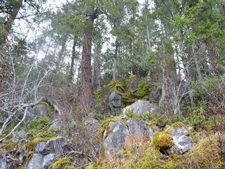 Photo 6: 1309 Gorge Harbour Rd in : Isl Cortes Island Land for sale (Islands)  : MLS®# 868715