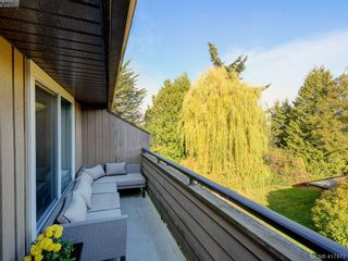 Photo 19: 302 3215 Alder St in VICTORIA: SE Quadra Condo for sale (Saanich East)  : MLS®# 828207