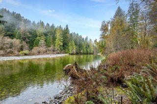 Photo 20: NE1/4SEC15 Gordon River Rd in Port Renfrew: Sk Port Renfrew Land for sale (Sooke)  : MLS®# 864408