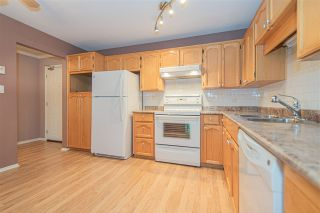 Photo 5: 106 20600 53A AVENUE in Langley: Langley City Condo for sale : MLS®# R2398486