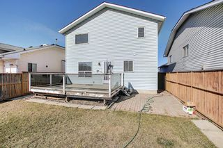 Photo 36: 351 Applewood Drive SE in Calgary: Applewood Park Detached for sale : MLS®# A1094539