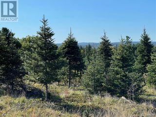 Photo 20: - Saint David Ridge in St. Stephen: Vacant Land for sale : MLS®# NB063465