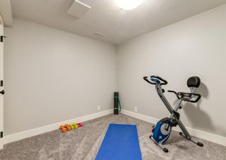 Photo 37: 6207 84 Street NW in Calgary: Silver Springs Detached for sale : MLS®# A1147522