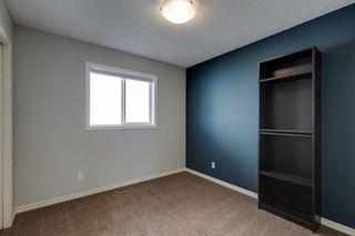 Photo 31: 62 Brightonstone Passage SE in Calgary: New Brighton Detached for sale : MLS®# A1149858