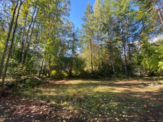 Photo 7: 4665 CRESCENT ROAD in Nelson: Vacant Land for sale : MLS®# 2461363