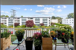 Photo 12: 304 1148 Goodwin St in : OB South Oak Bay Condo for sale (Oak Bay)  : MLS®# 853637