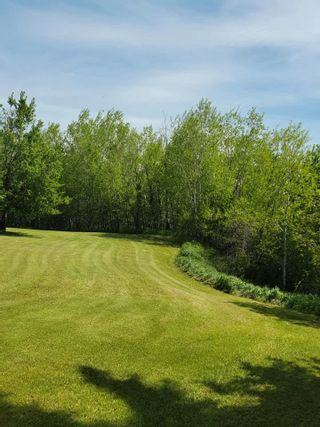 Photo 14: 49461 RGE RD 22: Rural Leduc County House for sale : MLS®# E4247442