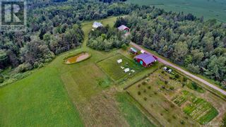 Photo 22: 799 Back Greenfield Road in Summerfield: Agriculture for sale : MLS®# NB060241