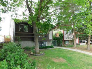 Photo 40: 4234 50 Street: Gibbons House for sale : MLS®# E4239668