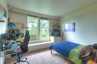 Photo 26: 3353 Salsbury Way in : SE Maplewood House for sale (Saanich East)  : MLS®# 877925