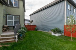 Photo 41: 204 Masters Crescent SE in Calgary: Mahogany Detached for sale : MLS®# A1143615