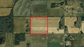 Photo 6: NW1/4 265 Road in Fort St. John: Fort St. John - Rural W 100th Land for sale (Fort St. John (Zone 60))  : MLS®# R2474232
