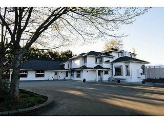 Photo 3: 20981 132ND Avenue in Maple Ridge: Northwest Maple Ridge House for sale : MLS®# V1116009