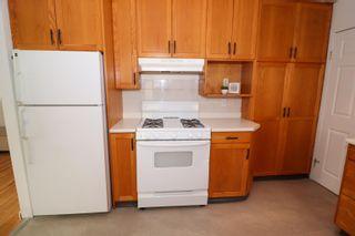 Photo 14: 10831 68 Avenue in Edmonton: Zone 15 House for sale : MLS®# E4259049
