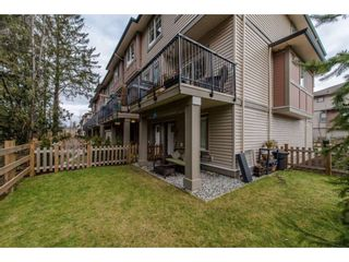 """Photo 18: 53 10151 240 Street in Maple Ridge: Albion Townhouse for sale in """"ALBION STATION"""" : MLS®# R2133799"""