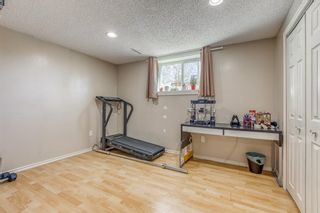 Photo 23: 1008 32 Street SE in Calgary: Albert Park/Radisson Heights Detached for sale : MLS®# A1090391