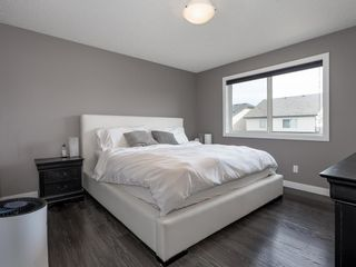 Photo 31: 155 Skyview Shores Crescent NE in Calgary: Skyview Ranch Detached for sale : MLS®# A1110098