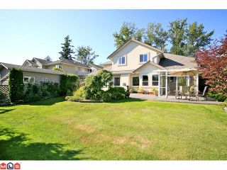 Photo 10: 14072 20A Avenue in Surrey: Sunnyside Park Surrey House for sale (South Surrey White Rock)  : MLS®# F1119453