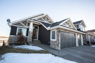 Photo 1: 678 Muirfield Crescent: Lyalta Detached for sale : MLS®# A1052688