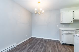 """Photo 7: 204 46374 MARGARET Avenue in Chilliwack: Chilliwack E Young-Yale Condo for sale in """"Mountain View Apartments"""" : MLS®# R2541621"""