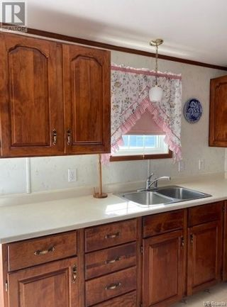 Photo 25: 302 Route 735 in Mayfield: House for sale : MLS®# NB060482