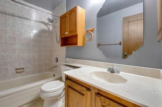 Photo 29: 28 Ranchridge Crescent NW in Calgary: Ranchlands Detached for sale : MLS®# A1126271