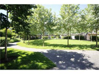 Photo 8: 57 9339 Alberta Road in Richmond: McLennan North Townhouse for sale : MLS®# V1069810