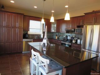 Photo 6: 15 Appletree Crescent in Winnipeg: Bridgwater Forest Residential for sale (1R)  : MLS®# 1720782