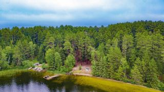 Photo 37: LK283 Summer Resort Location in Boys Township: Retail for sale : MLS®# TB212151