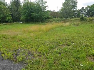 Photo 5: 6227 Highway 4 in Linacy: 108-Rural Pictou County Vacant Land for sale (Northern Region)  : MLS®# 202117205