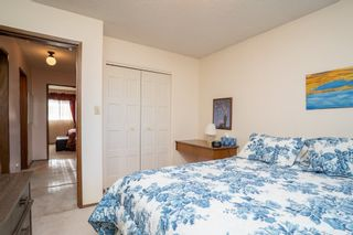 Photo 23: 10456 33 Avenue in Edmonton: Zone 16 House for sale : MLS®# E4225816