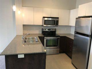 "Photo 5: 331 13733 107A Avenue in Surrey: Whalley Condo for sale in ""Quattro"" (North Surrey)  : MLS®# R2565794"