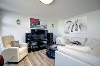 Photo 18: 106 NAPOLEON Crescent: St. Albert House for sale : MLS®# E4262401