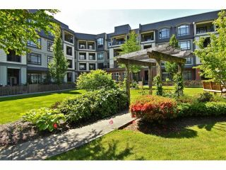 """Photo 15: 301 8880 202ND Street in Langley: Walnut Grove Condo for sale in """"THE RESIDENCES AT VILLAGE SQUARE"""" : MLS®# F1409404"""