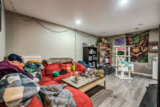 Photo 22: 8516 Bowness Road NW in Calgary: Bowness Detached for sale : MLS®# A1129149