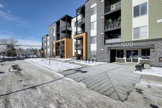 Photo 26: 1214 1317 27 Street SE in Calgary: Albert Park/Radisson Heights Apartment for sale : MLS®# A1070398