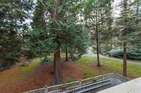 """Photo 19: 203 9130 CAPELLA Drive in Burnaby: Simon Fraser Hills Condo for sale in """"MOUNTAIN WOOD"""" (Burnaby North)  : MLS®# R2033274"""