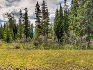 Photo 4: 7 34364 RANGE ROAD 42: Rural Mountain View County Land for sale : MLS®# A1017817