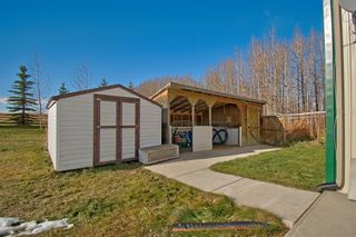 Photo 23: 3436 Township Road 294: Rural Mountain View County Detached for sale : MLS®# A1046453