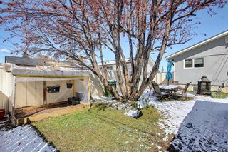 Photo 42: 1027 Penrith Crescent SE in Calgary: Penbrooke Meadows Detached for sale : MLS®# A1104837