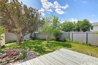 Photo 31: 31 COVENTRY Lane NE in Calgary: Coventry Hills Detached for sale : MLS®# A1116508