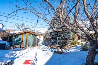Photo 22: 2510 17 Street NW in Calgary: Capitol Hill Detached for sale : MLS®# A1074729