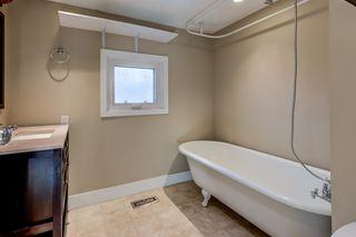 Photo 18: 12120 64 Street in Edmonton: Zone 06 House for sale : MLS®# E4239874