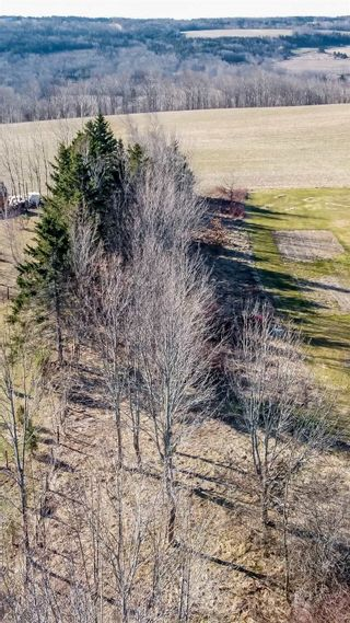 Photo 4: Lot Ridge Road in Wolfville Ridge: 404-Kings County Vacant Land for sale (Annapolis Valley)  : MLS®# 202106505