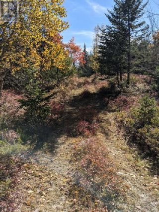Photo 3: Lots Samuel Mader Road in New Canada: Vacant Land for sale : MLS®# 202100319