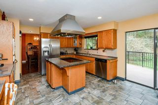 Photo 19: 12414 MCNUTT Road in Maple Ridge: Northeast House for sale : MLS®# R2560793