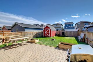 Photo 47: 180 Evanspark Gardens NW in Calgary: Evanston Detached for sale : MLS®# A1144783