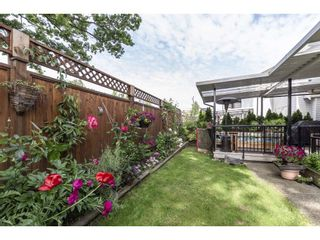 Photo 20: 14228 61A Avenue in Surrey: Sullivan Station House for sale : MLS®# R2294483