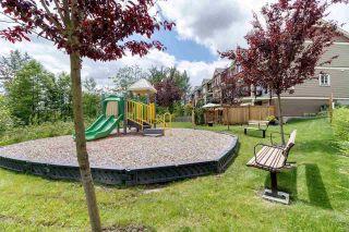 "Photo 5: 16 11252 COTTONWOOD Drive in Maple Ridge: Cottonwood MR Townhouse for sale in ""Cottonwood Ridge"" : MLS®# R2624318"